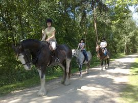 Horse Riding on The Whitegate Way